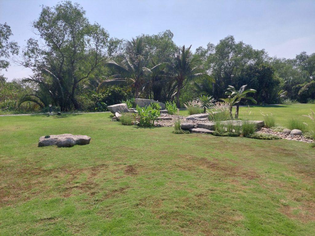 đất vườn ngoại ô sài gòn, đất nông nghiệp kinh tế vườn, đất nhà ở kinh tế vườn, long phước quận 9, đất trồng cây lâu năm, giá đất vườn