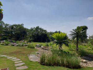 nhà vườn thủ đức, đất vườn thủ đức, cù lao long phước thủ đức, du lịch nhà vườn Thủ Đức, làng sinh thái thủ đức